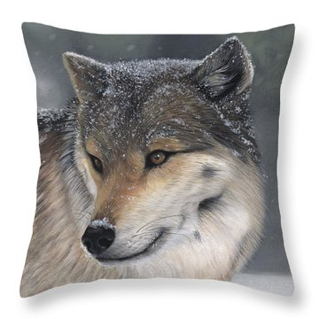 Distraction Throw Pillow