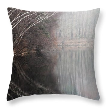 Divided By Nature Throw Pillow by Karol Livote