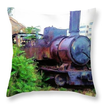 Throw Pillow featuring the photograph Do-00504 Train In Mar Mickael by Digital Oil