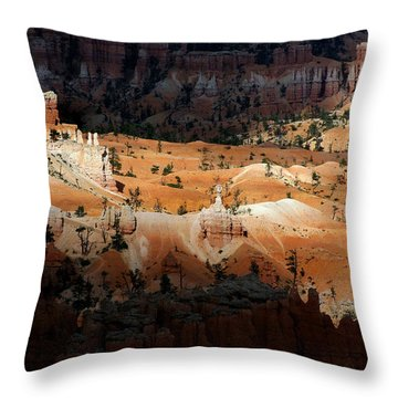 Throw Pillow featuring the photograph Do You Bielive In Magic by Vicki Pelham