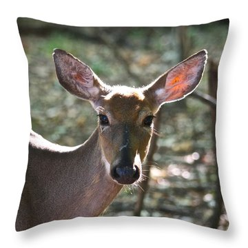 Doe Profile 9734 Throw Pillow by Michael Peychich