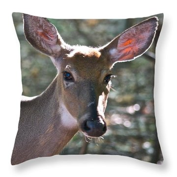 Doe Profile 9736 Throw Pillow by Michael Peychich
