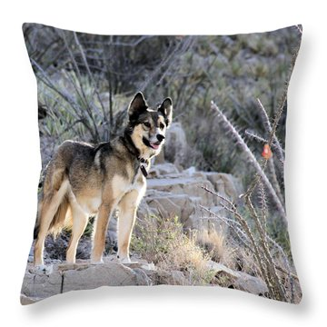 Dog In The Mountains Throw Pillow
