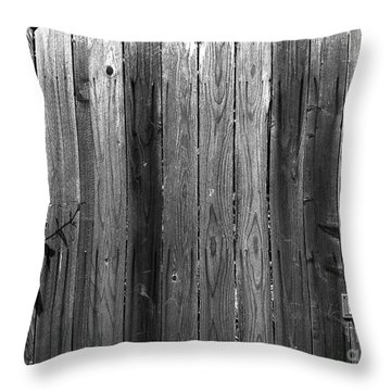 Dog Inside. Leave Mail In Yard. Throw Pillow by CML Brown