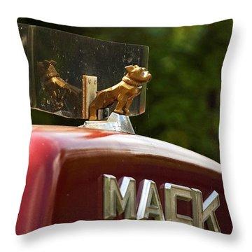 Dog On Truck  Throw Pillow by Elsa Marie Santoro