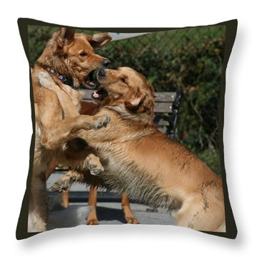 Dog Playground Throw Pillow by Valia Bradshaw