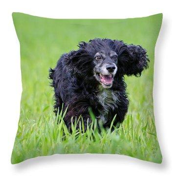 Dog Running On The Green Field Throw Pillow