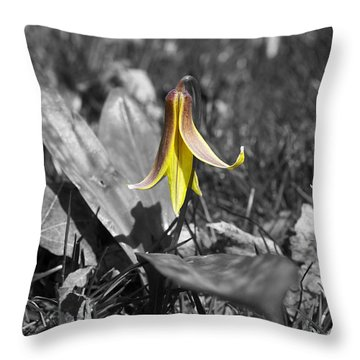 Dog Tooth Violet Throw Pillow by Elaine Mikkelstrup