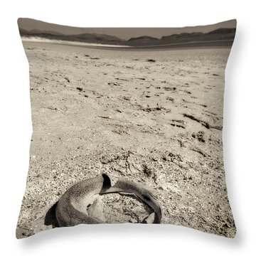 dogfish at Newborough Beach Throw Pillow by Meirion Matthias