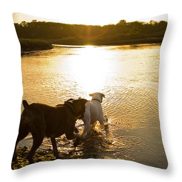 Dogs At Sunset Throw Pillow by Stephanie McDowell