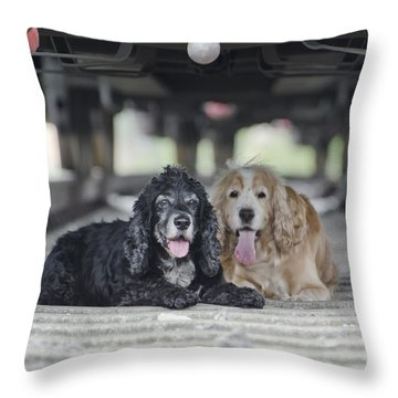 Dogs Lying Under A Train Wagon Throw Pillow