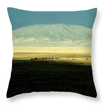 Dome Mountain Throw Pillow by Brent L Ander