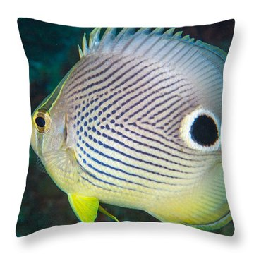 Dont Eyeball Me Throw Pillow by Jean Noren