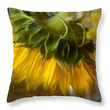 Throw Pillow featuring the photograph Don't Weep For Me by John Rivera
