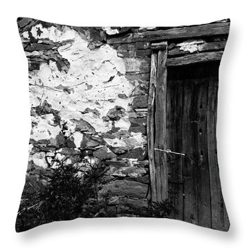 Door  Window And The Wall  Throw Pillow