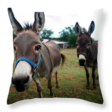 Throw Pillow featuring the photograph Doting Donkeys by Lon Casler Bixby