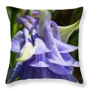 Double Columbine Named Light Blue Throw Pillow by J McCombie
