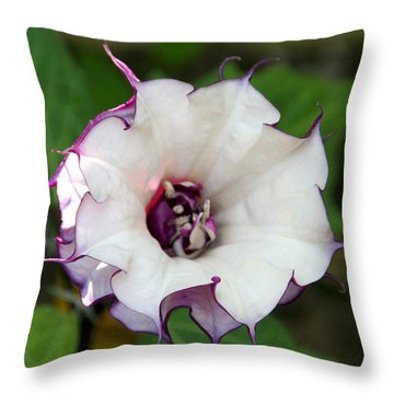 Double Purple Datura Throw Pillow by Diana Haronis
