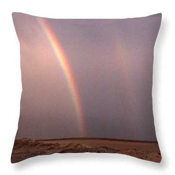 Double Throw Pillow by Skip Willits