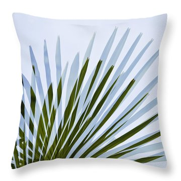 Double Vision Throw Pillow by Sherri Meyer