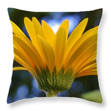 Down And Under Throw Pillow by Bruce Bley