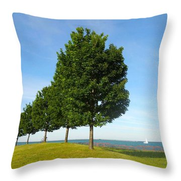 Down By The Lake Throw Pillow by Sarah Vandenbusch