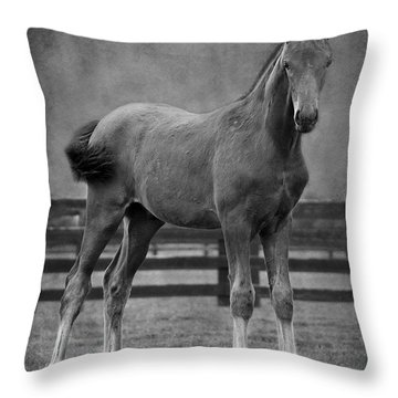 Drago Throw Pillow
