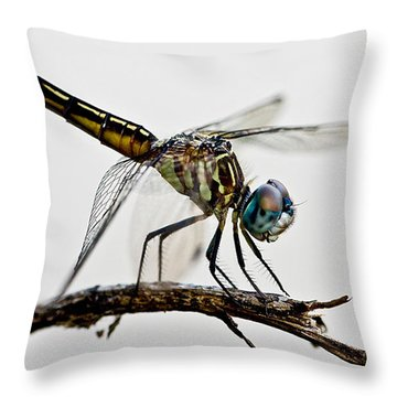 Throw Pillow featuring the photograph Dragon by Dan Wells