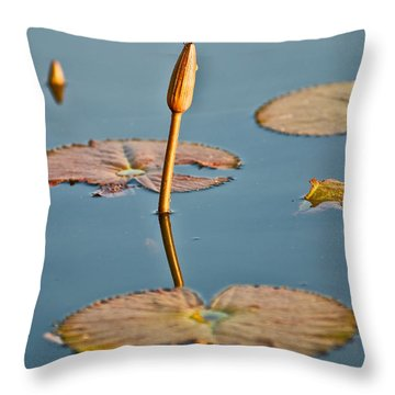 Throw Pillow featuring the photograph Dragonfly And Lotus by Luciano Mortula