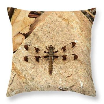 Throw Pillow featuring the photograph Dragonfly At Rest by Deniece Platt