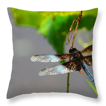 Dragonfly Throw Pillow by Cindy Manero