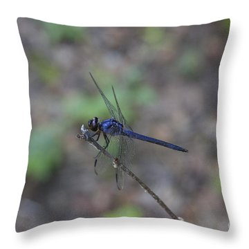 Throw Pillow featuring the photograph Dragonfly by Jerry Bunger