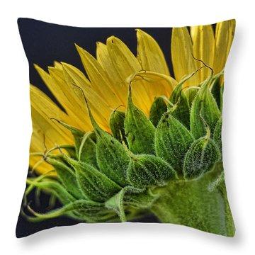 Drama Throw Pillow by Saija  Lehtonen