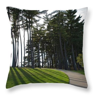 Throw Pillow featuring the photograph Dramatic by Joseph Yarbrough