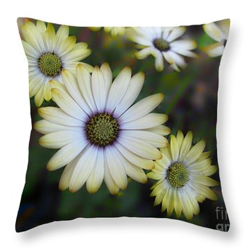 Dream Daisy Throw Pillow by Arlene Carmel