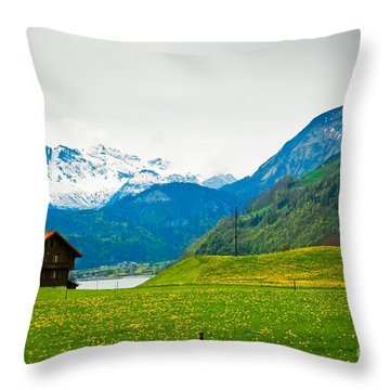 Dream Home Throw Pillow by Syed Aqueel