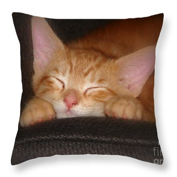 Dreaming Kitten Throw Pillow