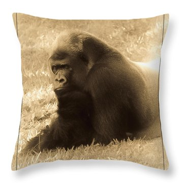 Dreaming Of Home Throw Pillow by DigiArt Diaries by Vicky B Fuller