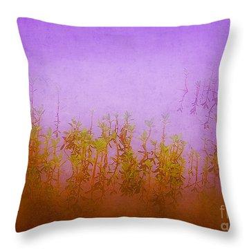 Dreams At Daybreak Throw Pillow by Judi Bagwell