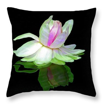 Throw Pillow featuring the photograph Dreamscape by Blair Wainman