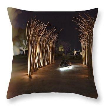 Dreamtime V2 Throw Pillow