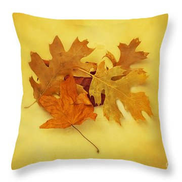 Dried Autumn Leaves Throw Pillow