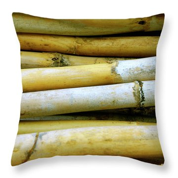 Dried Canes Throw Pillow by Carlos Caetano