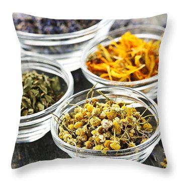 Dried Medicinal Herbs Throw Pillow by Elena Elisseeva