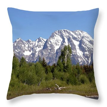 Throw Pillow featuring the photograph Driftwood And The Grand Tetons by Living Color Photography Lorraine Lynch