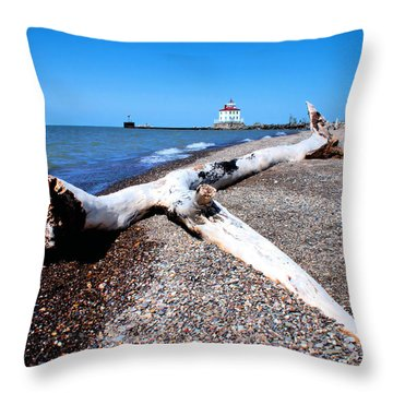 Driftwood At Erie Throw Pillow by Michelle Joseph-Long