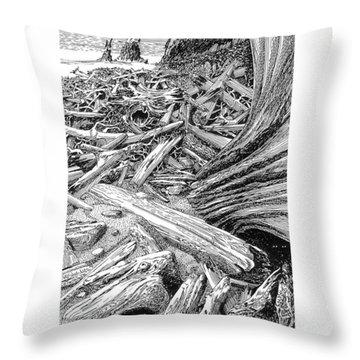 Driftwood Black Cat Throw Pillow by Jack Pumphrey