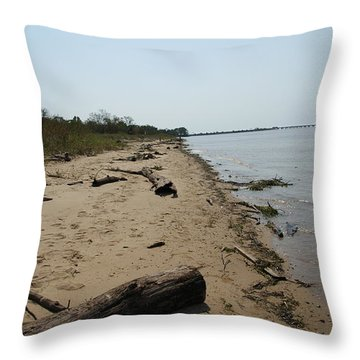 Throw Pillow featuring the photograph Driftwood by Charles Kraus