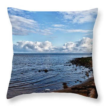 Throw Pillow featuring the photograph Driftwood Crossed by Rachel Cohen