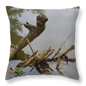 Throw Pillow featuring the photograph Driftwood by Renee Trenholm